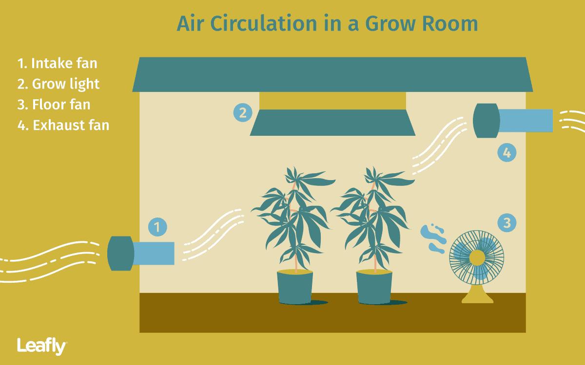 Air circulation in a grow tent