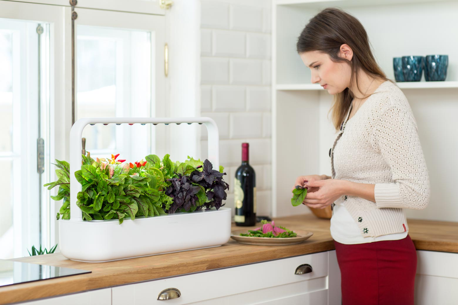 click and grow the smart garden 9
