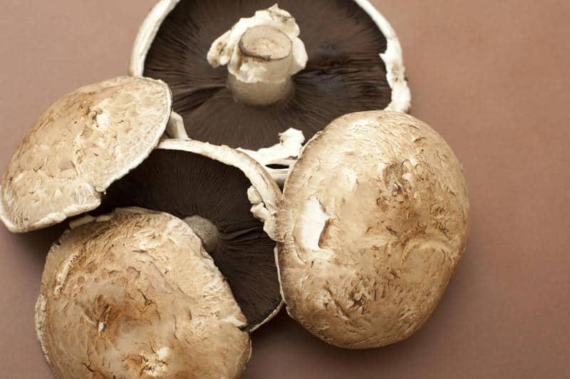Large fresh raw portobello mushrooms