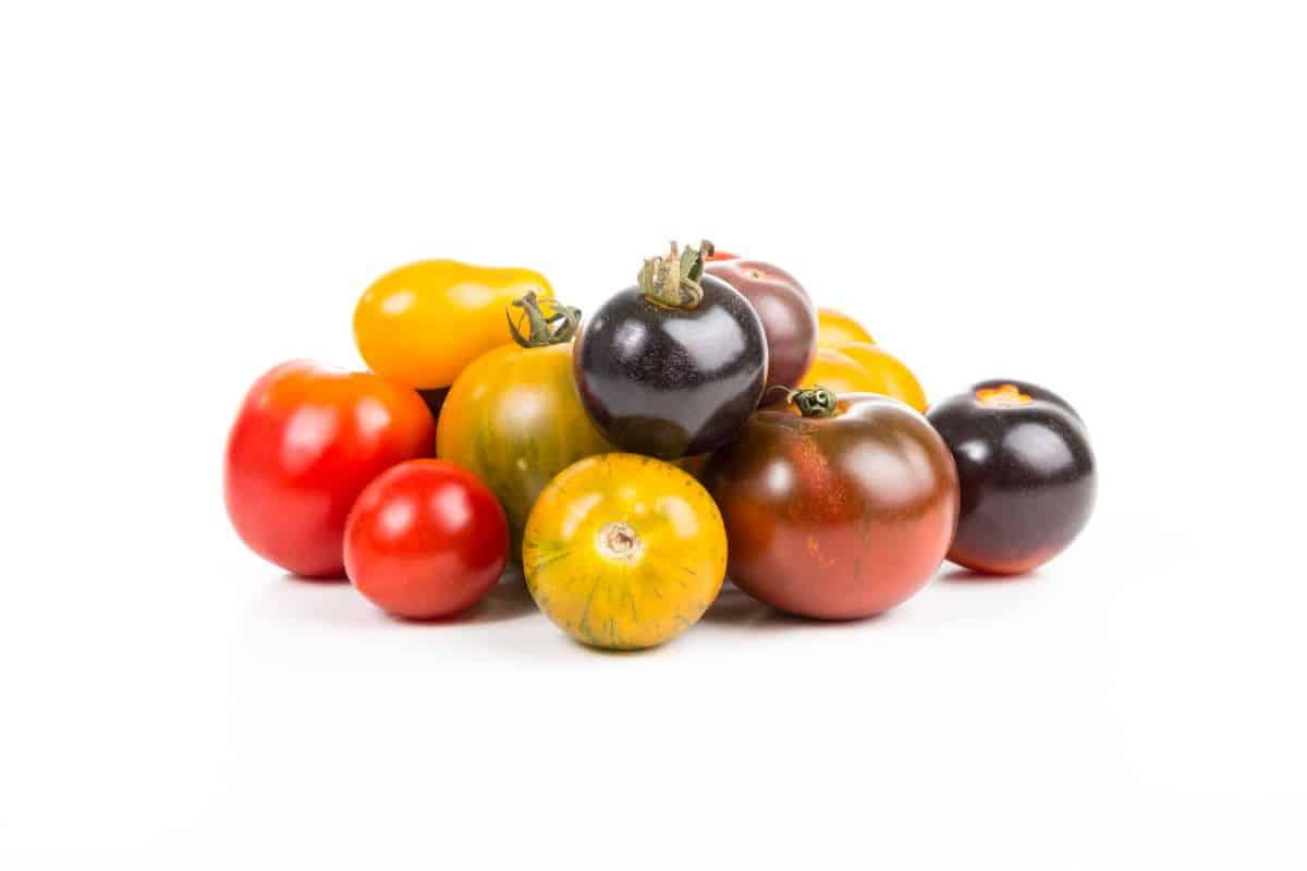 type of tomato