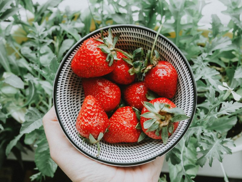 select the right strawberry type