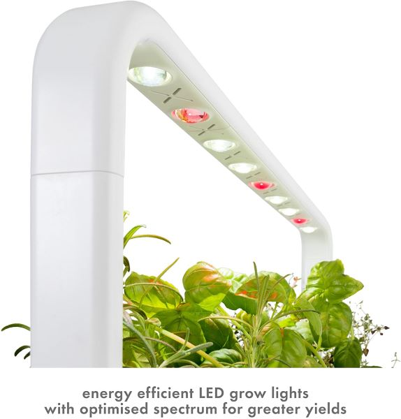 click and grow lights