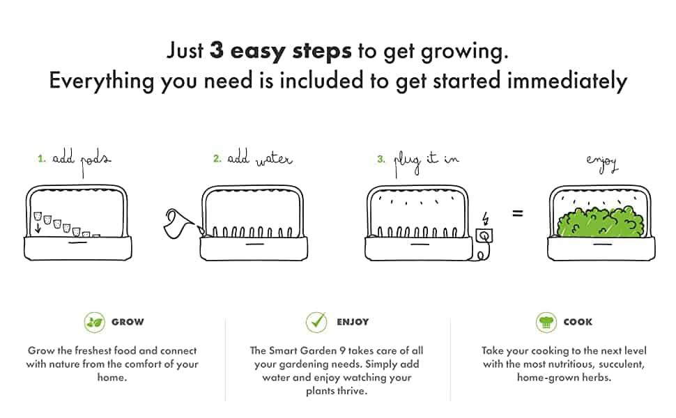 click and grow process