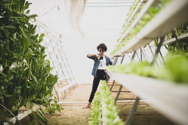 is hydroponics better