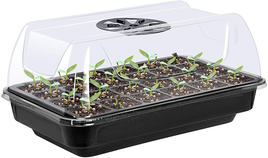 humidity dome for plants