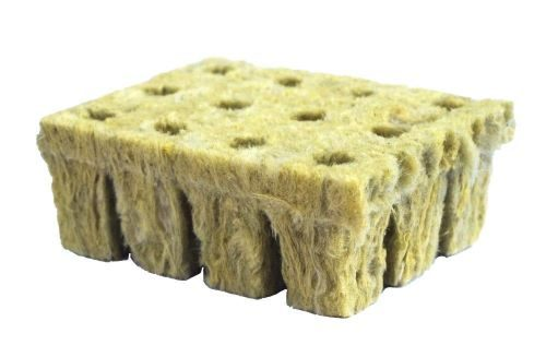 rockwool cubes with holes
