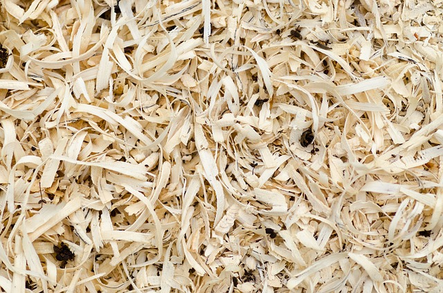 what is sawdust